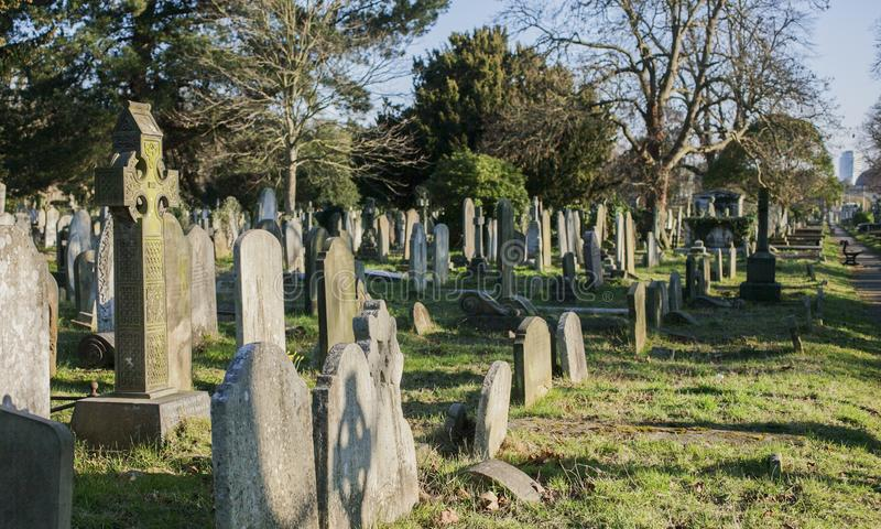 A cemetery - sunny day in London. royalty free stock photo