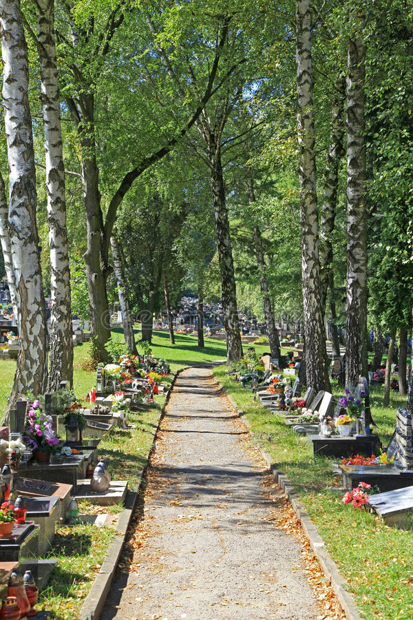 Download Cemetery In Town Ruzomberok, Slovakia Editorial Stock Image - Image: 33616554