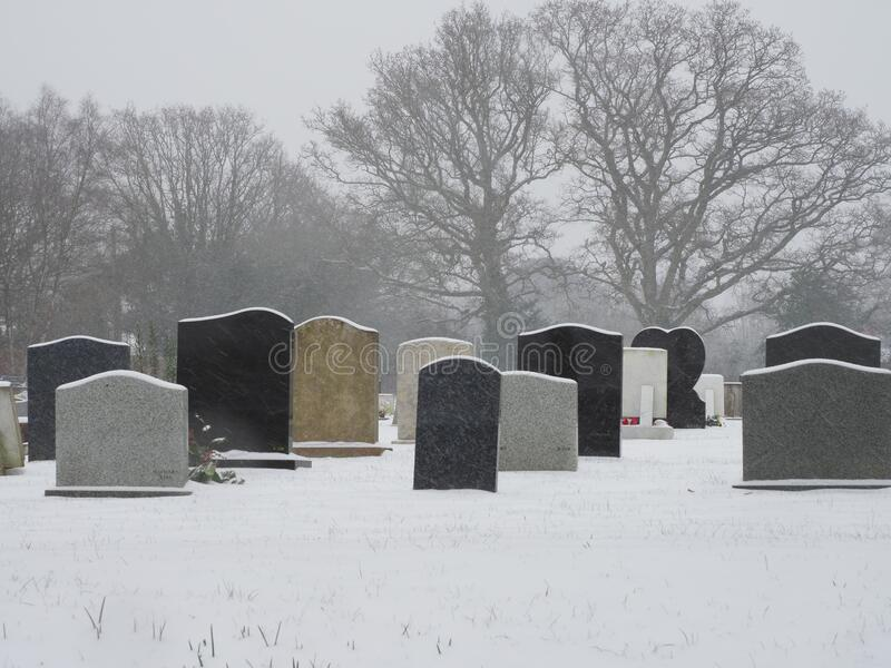 A cemetry in the snow. A cemetry with headstones seen from behind in the snow in winter royalty free stock photo