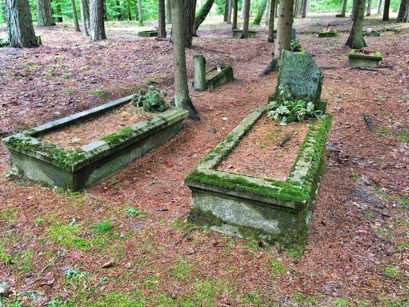 Cemitério abandonado no Polônia imagem de stock