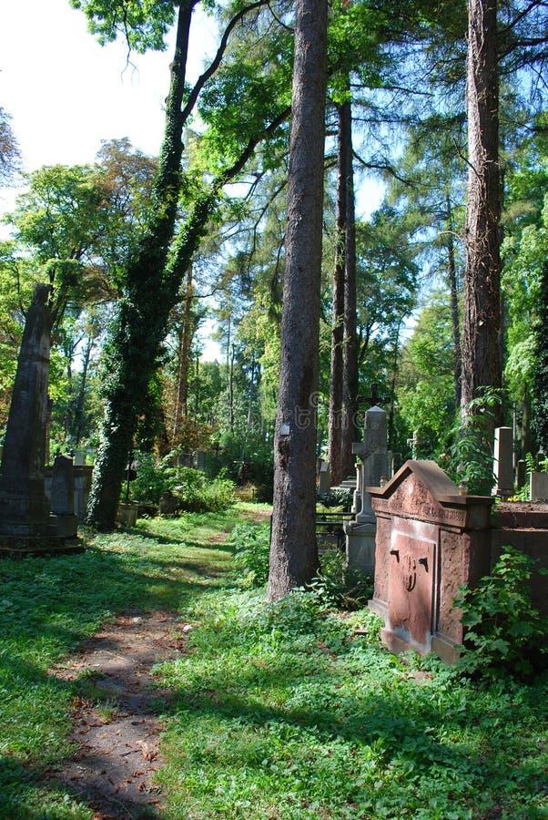 Cemitério antigo em Lviv fotos de stock royalty free
