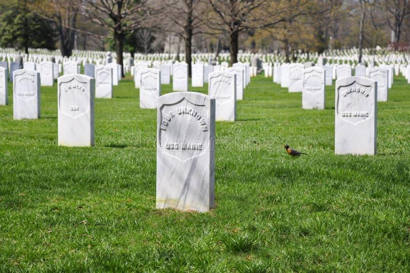 Cemitério de Arlington fotos de stock royalty free
