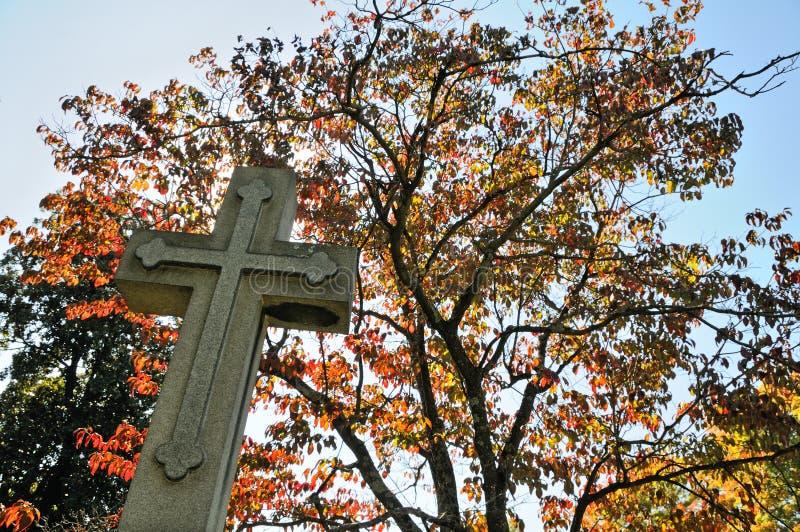 Cemitério de Hollywood fotografia de stock