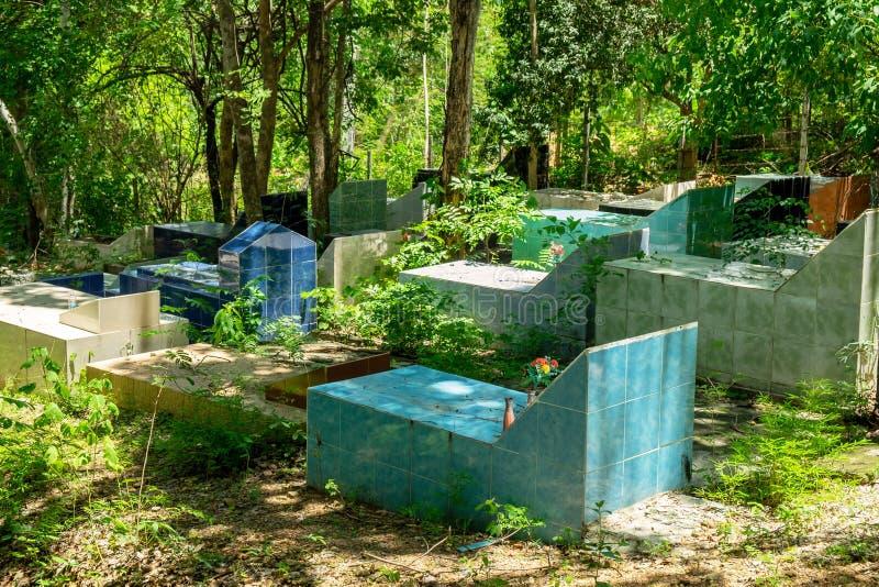 Cemitério exterior em Forest Scary e no Gravesite antigo fotos de stock royalty free