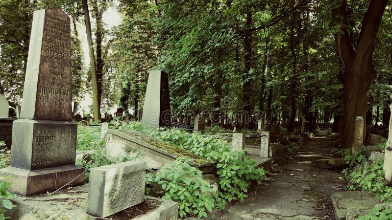 Cemitério judaico abandonado imagem de stock royalty free