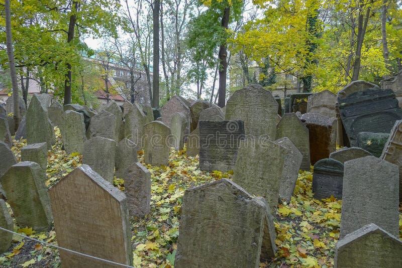 Cemitério judaico em Praga em República Checa imagem de stock royalty free