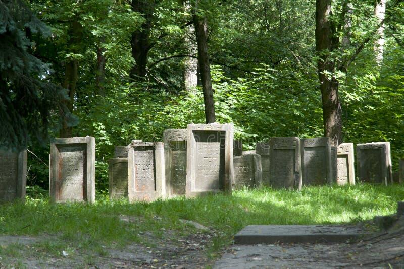 Cemitério judaico - Lezajsk - Polônia fotos de stock