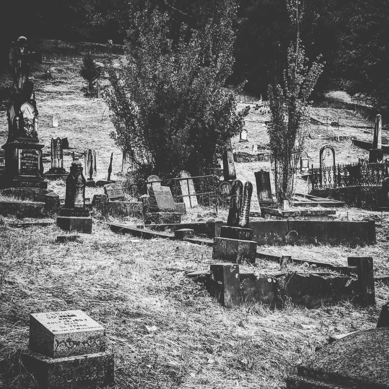 Cemitério pioneiro fotografia de stock royalty free
