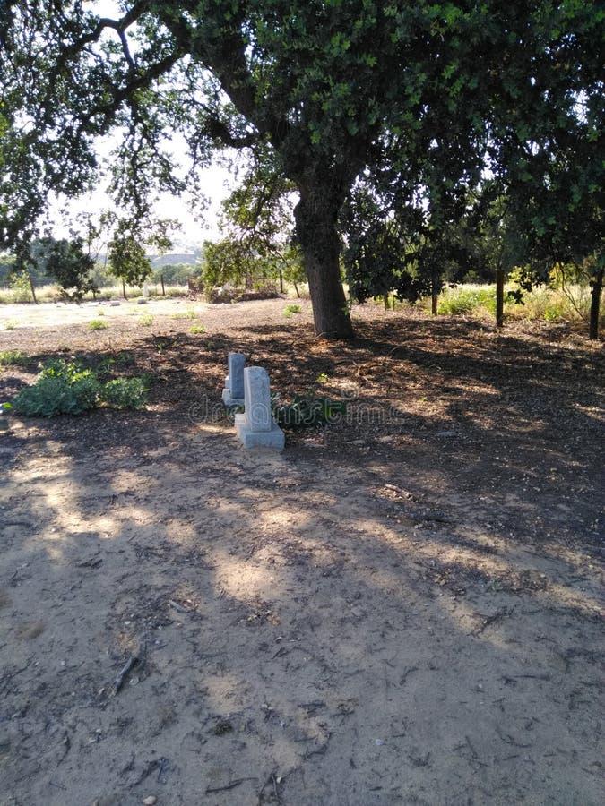 Cemitério velho em Califórnia fotografia de stock royalty free