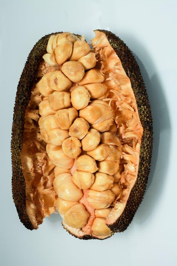 Cempedak frukt arkivfoto