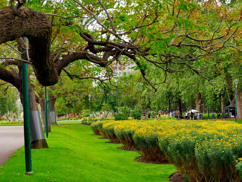 Cenário adorável, calmo de jardins de Fitzroy em Melbourne foto de stock royalty free