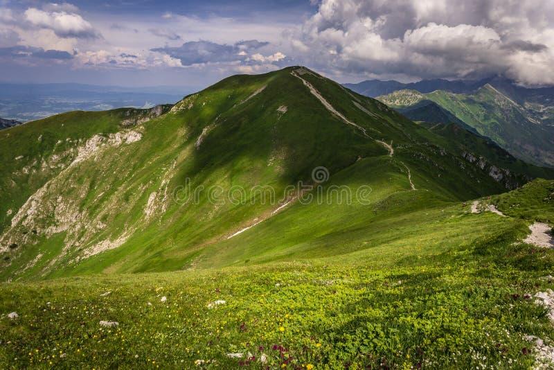 Cenário bonito de grandes picos de montanha Tatra ocidental Mountai imagens de stock