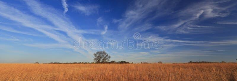 Cenário calmo rural com o céu azul profundo imagens de stock royalty free