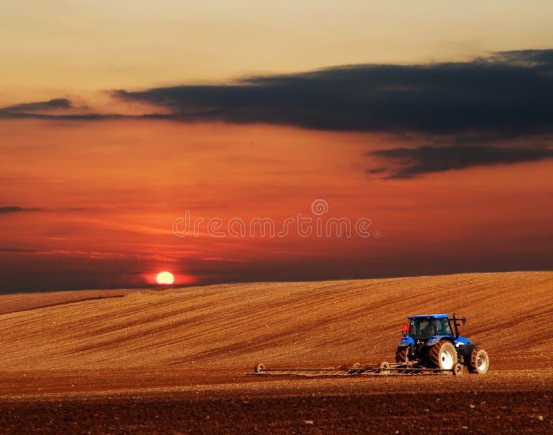 Cenário da agricultura fotos de stock