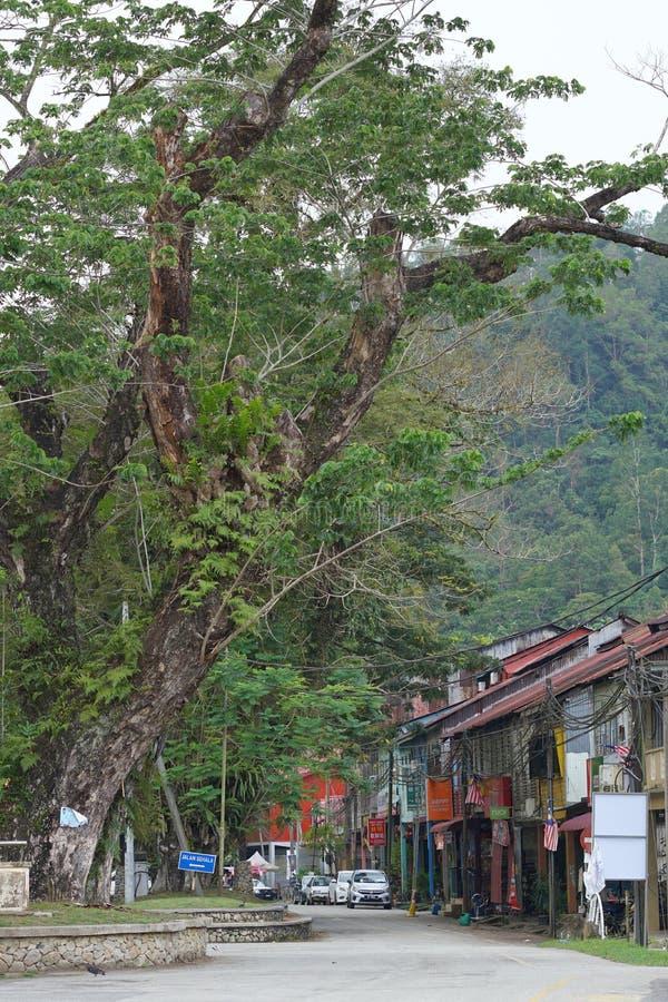 Cenário da casa e da estrada em Sungai Lembing foto de stock royalty free