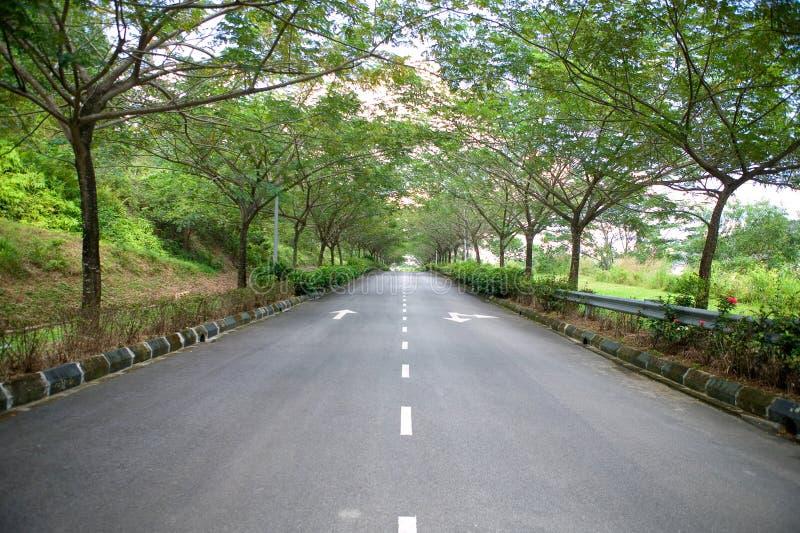 Cenário da estrada fotografia de stock royalty free