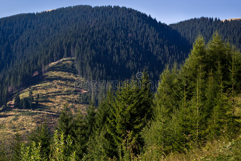 Cenário da montanha foto de stock