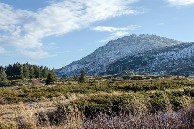 Cenário da montanha de Vitosha, Bulgária fotografia de stock royalty free