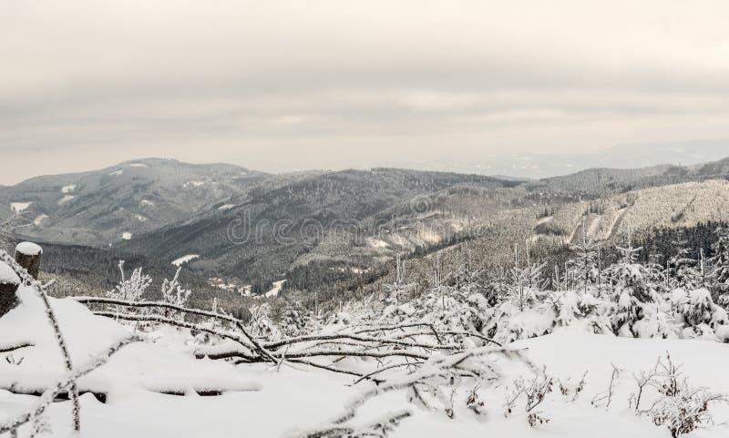 Cenário da montanha do inverno com os montes cobertos pela floresta congelada e pelo vale pequeno da montanha com poucas casas fotografia de stock