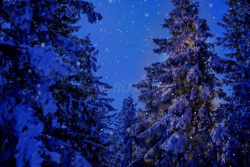 Cenário da montanha do Natal do país das maravilhas do inverno com abeto vermelho centenário e pinho nos cumes austríacos na luz  foto de stock