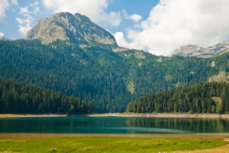 Cenário da montanha, parque nacional Durmitor, Montenegro fotografia de stock