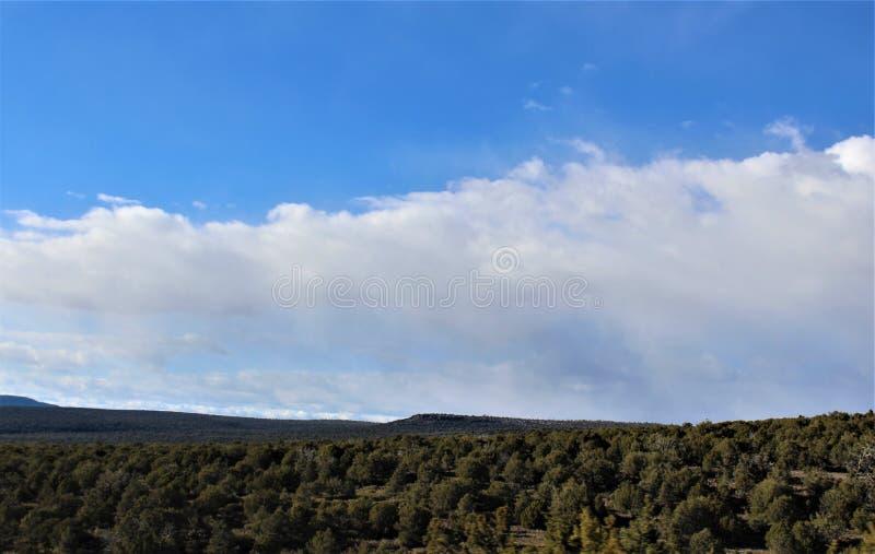 Cenário da paisagem, 17 de um estado a outro, mastro a Phoenix, o Arizona, Estados Unidos fotografia de stock royalty free