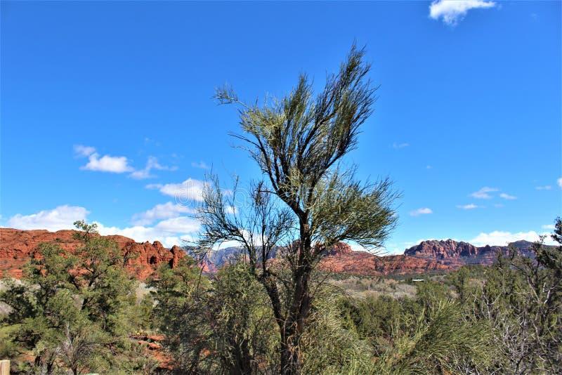 Cenário da paisagem, 17 de um estado a outro, Phoenix ao mastro, o Arizona, Estados Unidos imagem de stock