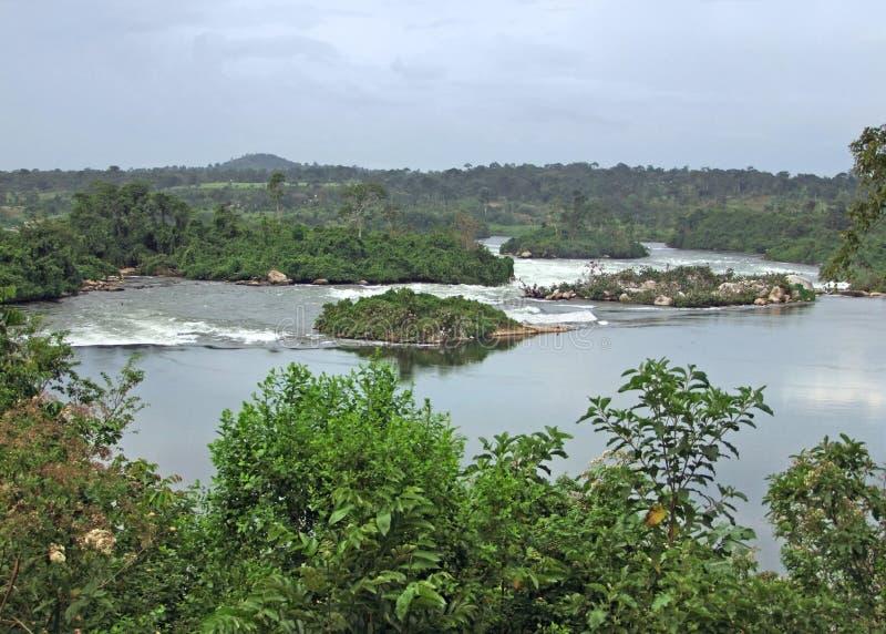 Cenário de Nile do rio do Waterside perto de Jinja em África fotografia de stock royalty free