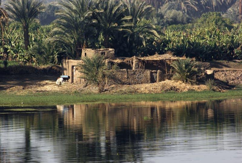 Cenário de Nile do rio entre Aswan e Luxor fotos de stock