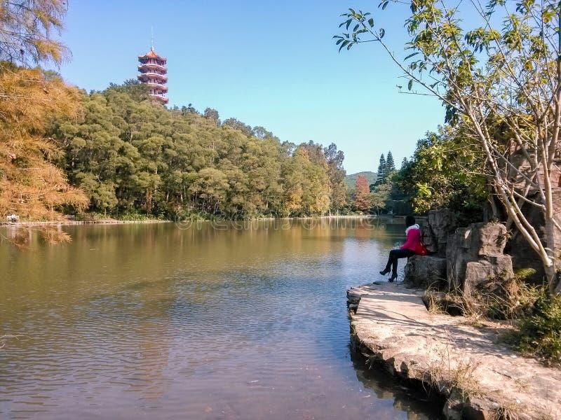 Cenário do jardim botânico do xianghu de Shenzhen imagens de stock royalty free
