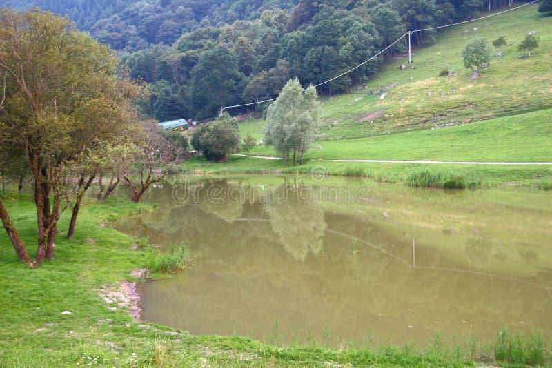 Download Cenário do lago imagem de stock. Imagem de alinhado, estrada - 80102339