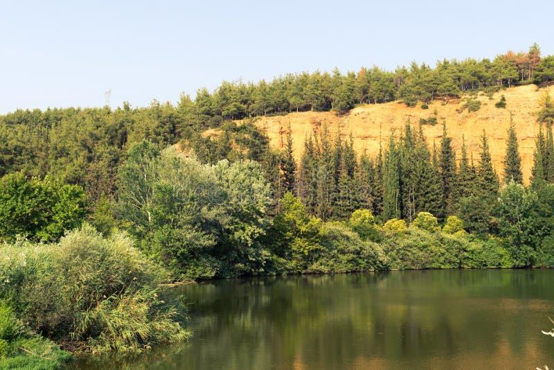 Cenário do lago e da montanha forest foto de stock royalty free
