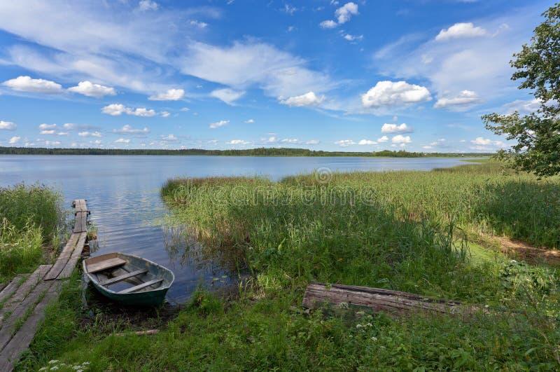 Cenário do lago summer fotografia de stock royalty free