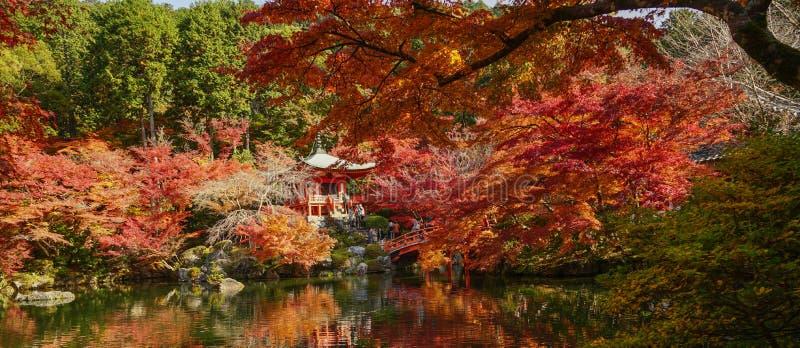 Cenário do outono de Kyoto, Japão fotos de stock