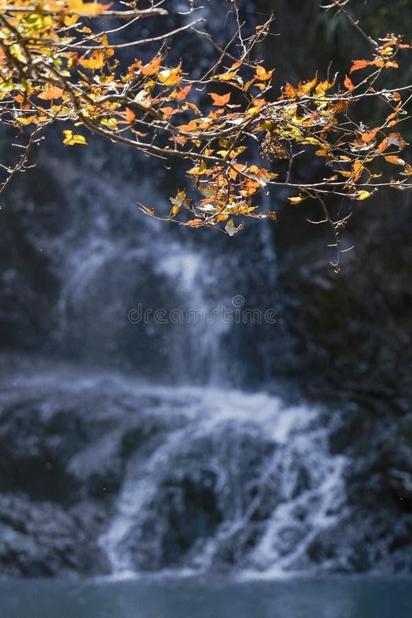Cenário do outono de Taizhou fotografia de stock royalty free