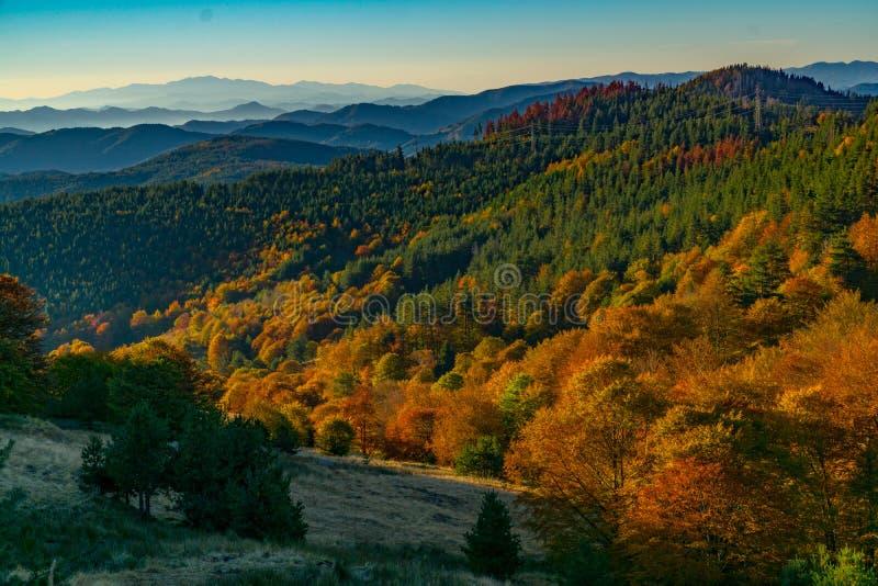 Cenário do outono na montanha de Rhodopi em Bulgária imagem de stock