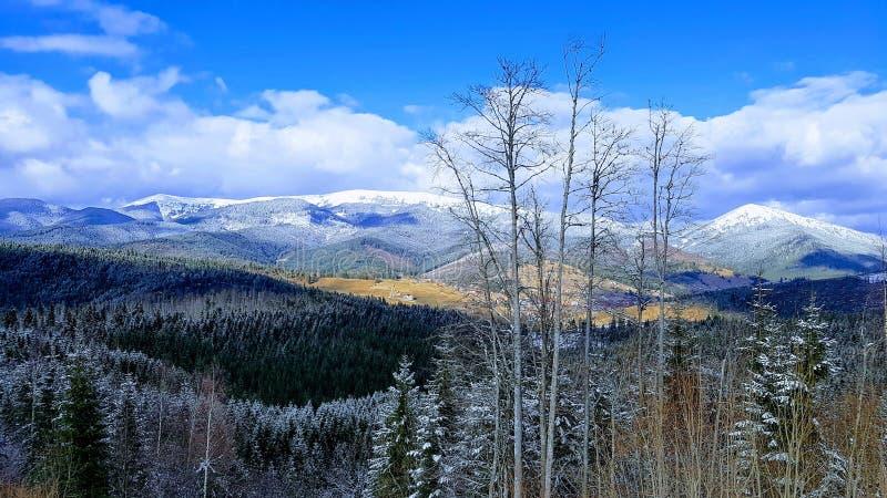 Cenário em montanhas Carpathian, Ucrânia imagem de stock royalty free