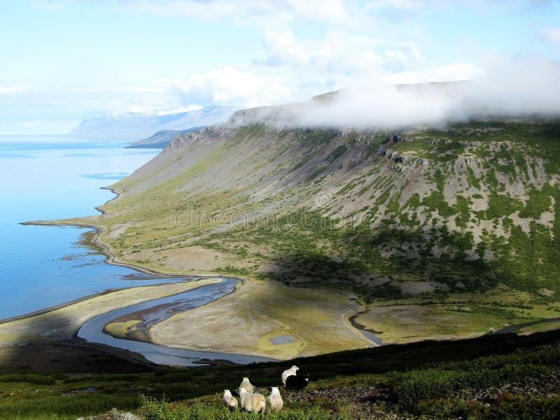 Cenário islandês idílico fotografia de stock