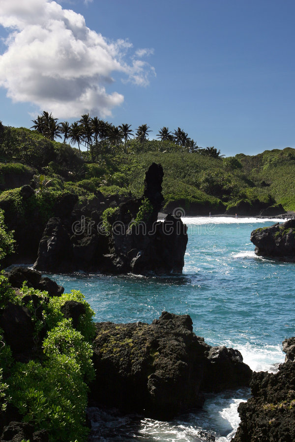 Cenário litoral havaiano imagem de stock