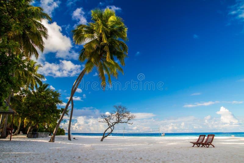 Cenário romântico da praia com sunbeds em Maldivas imagens de stock
