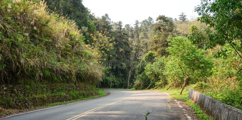 Cenário rural com a estrada no campo imagens de stock