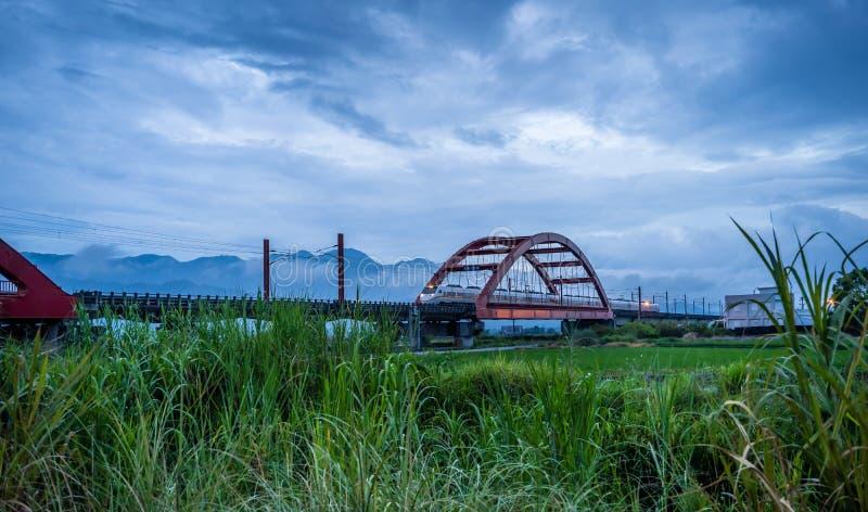 Cenário rural com a exploração agrícola verde do arroz 'paddy' em Hualien, Taiwan, Ásia imagem de stock