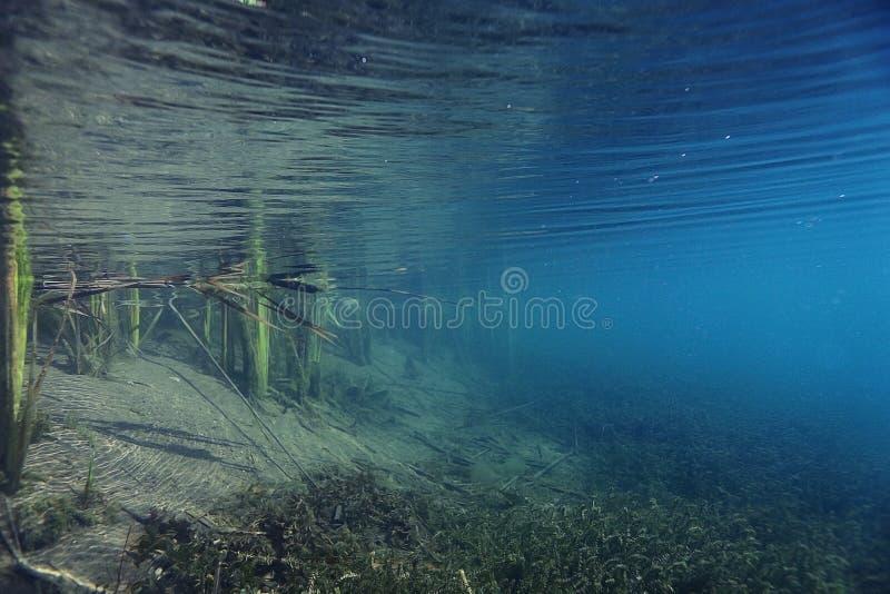 Cenário subaquático imagens de stock