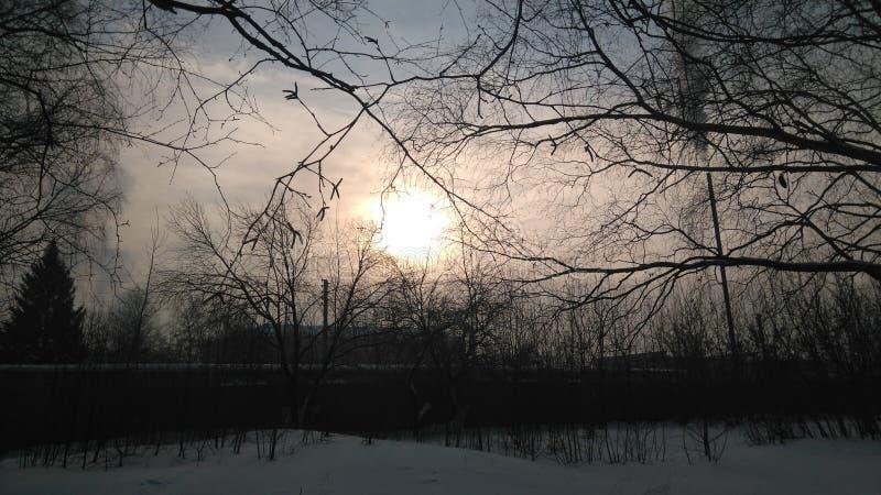 Cen?rio bonito No dia da esta primavera o sol não estava brilhando brilhantemente, e era possível olhá-lo imagem de stock royalty free