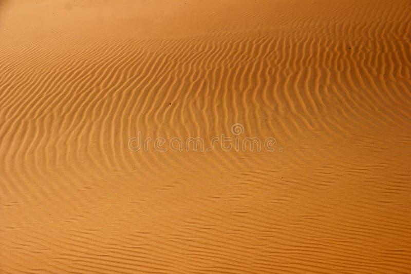 Cena abstrata do deserto Teste padrão da areia ilustração royalty free