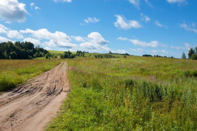 Cena agradável do verão com estrada da trilha imagens de stock royalty free
