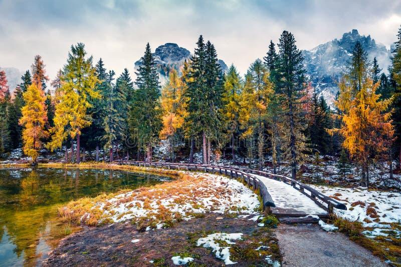 Cena ao ar livre do lago Antorno Colorida manhã do outono em Dolomite Alps, Parque Nacional Tre Cime di Lavaredo, Itália, Europa fotos de stock royalty free