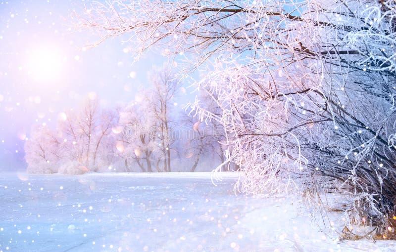 Cena bonita da paisagem do inverno com rio do gelo foto de stock royalty free