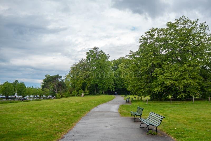 Cena bonita do parque público com o trajeto concreto da caminhada, o banco verde e as árvores luxúrias no fundo do céu nebuloso fotografia de stock