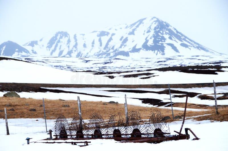 Cena da exploração agrícola na neve imagens de stock royalty free
